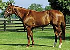 Smarty Jones' First Winner