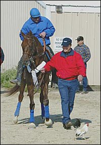 The Return of Smarty Jones: Hail the Conquering Hero