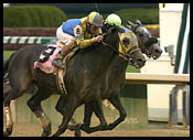 Churchill Downs Race Report: Speak Softly