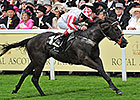 Sole Power to Try for Second Nunthorpe Win