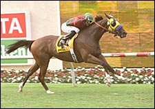 Special Ring Smashes Del Mar Turf Mark