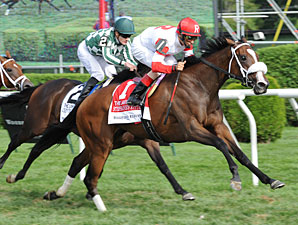 Stephanie's Kitten Surges in Lake Placid