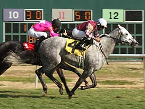 Asmussen Sets Record for Most Wins