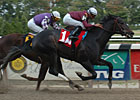 Preakness Contenders Gallop at Churchill