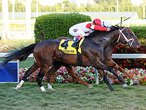 Storming Inti wins the Kitten's Joy Stakes.