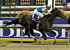 Blood-Horse to Showcase BC Perfect Trips