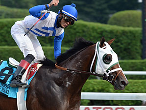 Grade I Winner Strong Mandate Retired to Stud