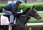 2011 Kentucky Oaks Field