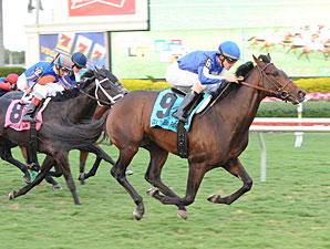 Summer Front Returns in Cliff Hanger Stakes