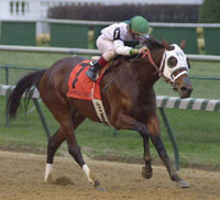Churchill Racing: Surfside Makes Case for Eclipse Award