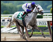 Belmont Park Race Report: Swept Clean