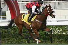 Takeover Target Has Taken His Owner/Trainer from Obscurity to the Top