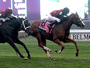 Chad Brown Fillies Vie for Florida Oaks