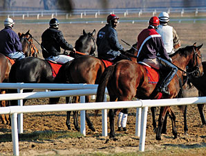 Plan Floated for Jersey Training Center