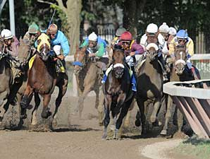 Horses Come Back OK After Rough Travers
