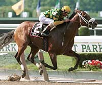 Grade I Winner Trippi Retired; Arrives at Vinery