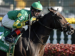 Unbridled Sidney Retired