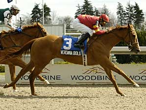Verdana Bold wins the Star Shoot Stakes over Authenticat.