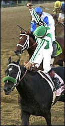 Triple Crown Threat: War Emblem Wins Preakness