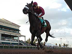 War Pass Draws Post Five in Wood