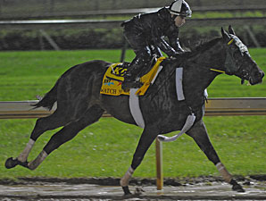 Monday, May 2 Derby Workouts at a Glance