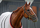 Wise Dan Goes Five Furlongs in :59 Flat