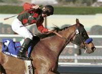 Santa Anita Report: Robbins on Other Side of Upset Fence