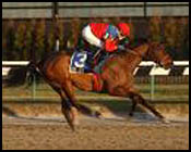 Xtra Heat Romps in Interborough Handicap