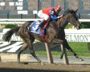 Juvenile Fillies Preview: Bucking History