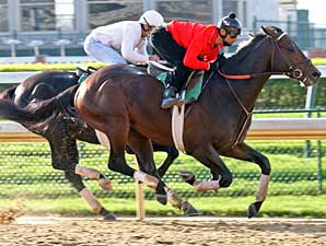 Z Humor Works at Churchill Downs