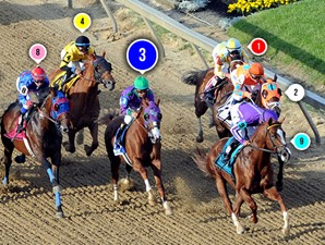 2014 Preakness Stakes Race Sequence