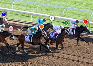 2015 Bluegrass Stakes Race Sequence