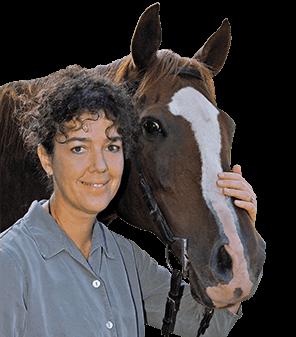 horse dissertations