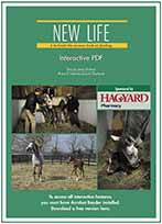 New Life: A Behind-the-Scenes Look at Foaling
