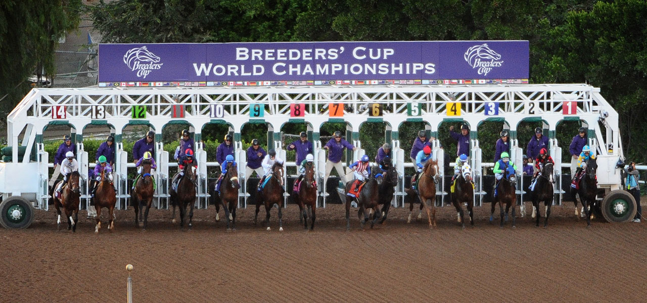 2014 Breeders Cup Classic Race Sequence Features