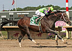 A.U. Miner Earns Second Trip to Breeders' Cup