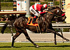Acclamation Named Cal-bred Horse of the Year