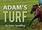 Adam's Turf: A Year of Finishes