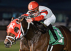 Surging Admiral Kitten Wins Connally Turf Cup