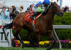 Ageless, Wallyanna Take Pimlico Turf Stakes