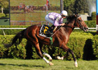 Al Khali Makes the Grade in Saranac