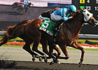 Alpha Bettor Edges City Wolf in Seagram Cup