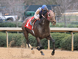 Alternation Returns in Hawthorne Gold Cup