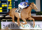 Stakes Winner Always in My Heart Retired