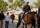 American Lion Breezes at Keeneland