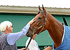 'Pharoah' in Good Health, Headed to Churchill