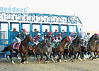 Protest Cancels First Race at Aqueduct