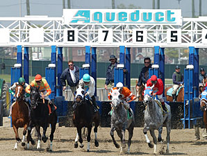 Aqueduct Backstretch to Close for Six Weeks