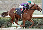 Daughter of Azeri Captures Debut at Oaklawn