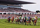 Arlington Stakes Races to Offer $5.5 Million